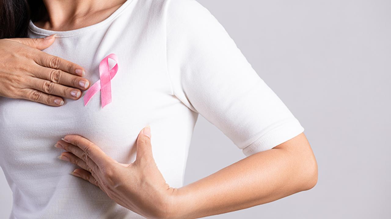 Ação dos Fitoquímicos na prevenção do Câncer de Mama